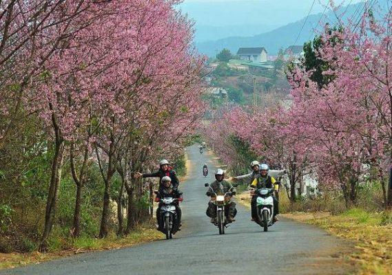 Du lịch Đà Lạt lễ 30 tháng 4