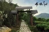 Lạc trôi vào chùa Linh Quy Pháp Ấn tại Đà Lạt