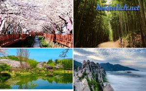 Cảnh đẹp ở Hàn Quốc