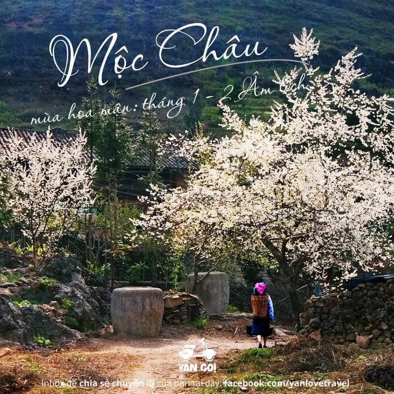 Việt Nam 12 tháng nên đi đâu tháng 1 - 2 ?