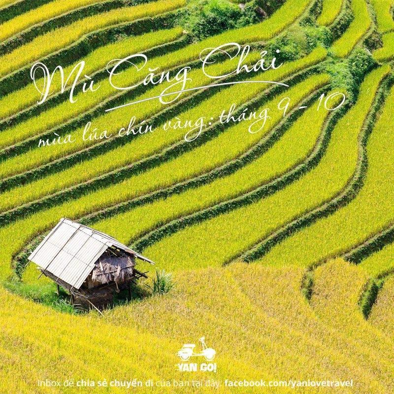Việt Nam 12 tháng nên đi đâu tháng 10