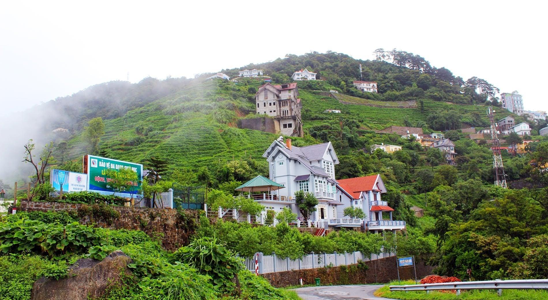 Du lịch Tam Đảo–thông tin chi tiết nhất