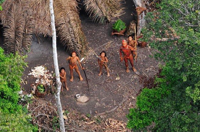 Những điều kỳ lạ trong rừng Amazon