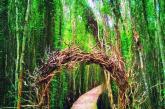[TỔNG HỢP] Các khu du lịch sinh thái gần Sài Gòn hấp dẫn