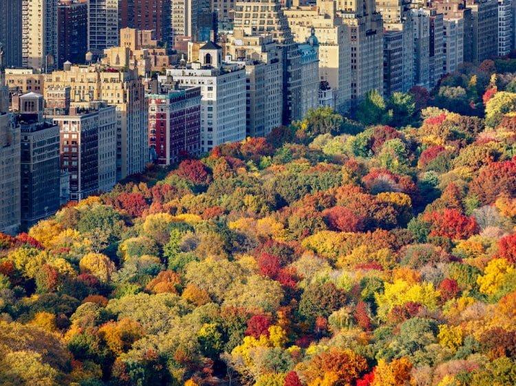 Công viên trung tâm New York (Mỹ)