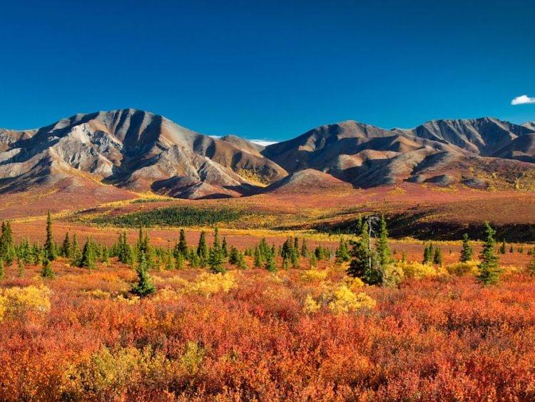 Vườn quốc gia Denali (Alaska, Mỹ)