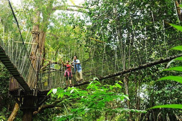 Trekking vườn quốc gia khi du lịch Penang