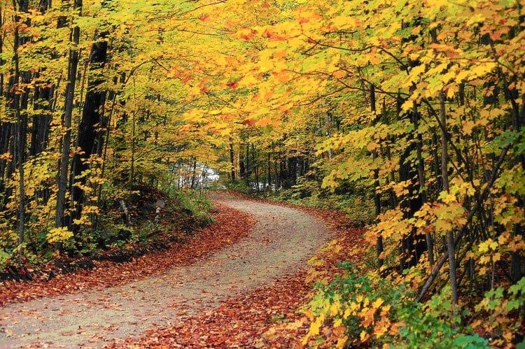 Vermont (Mỹ)