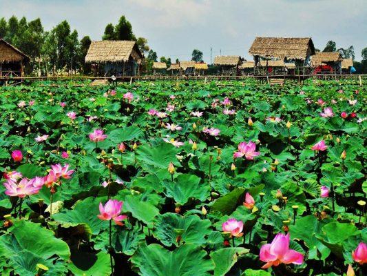 Khu du lịch sinh thái Đồng Sen
