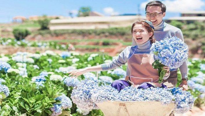 Khoảnh khắc vui hạnh phúc cùng người thân yêu ở giữa cánh đồng hoa cảm tú cầu (ảnh sưu tầm )