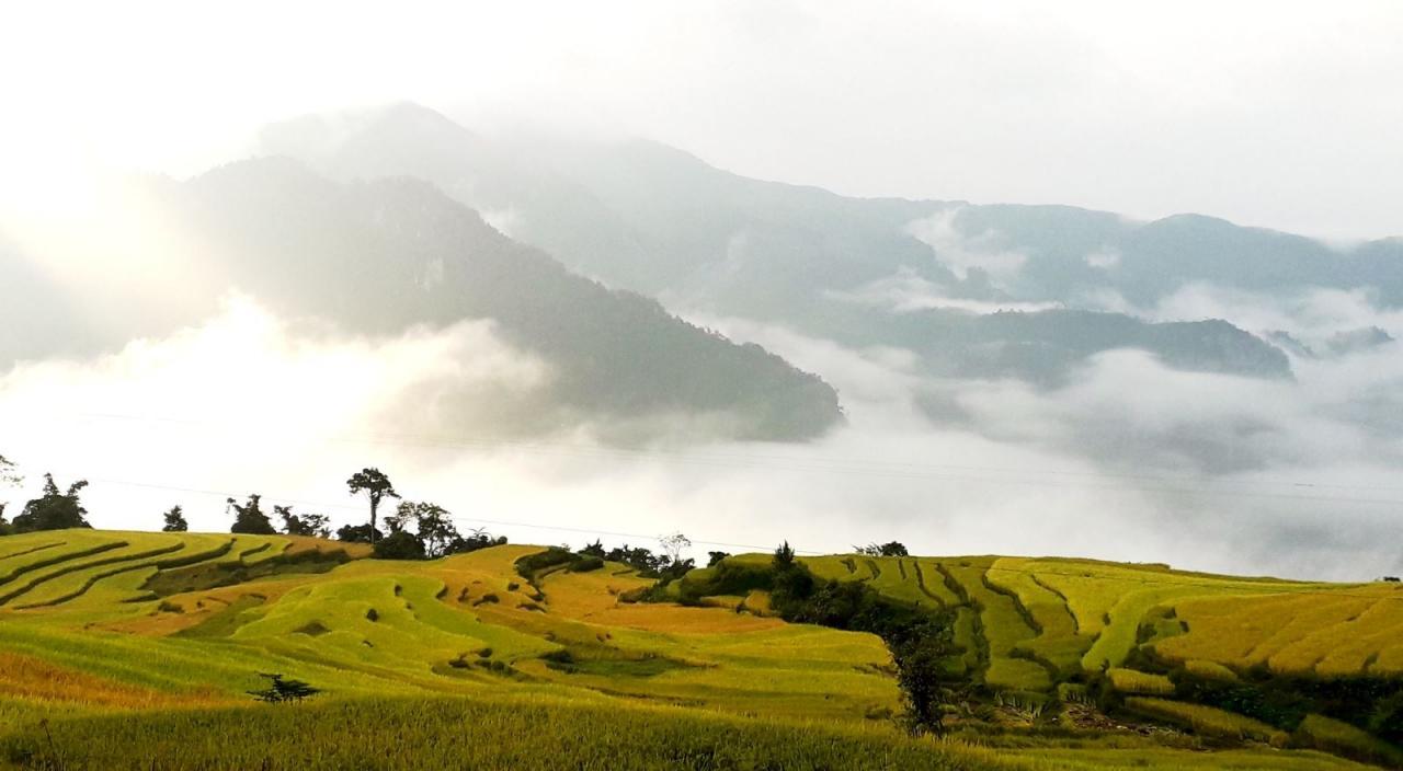 Trải nghiệm homestay tại làng Hồng Thái