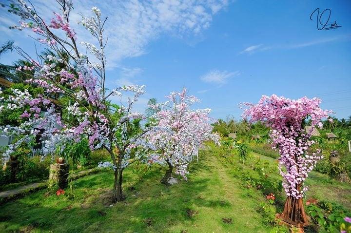 Xuân này rủ nhau đến Mỹ Tho check in vườn hoa Mộc Thiên Hoa nào!