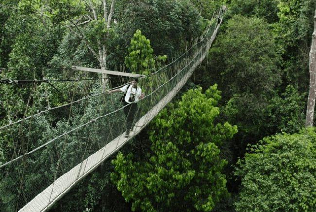vườn quốc gia Taman Negara