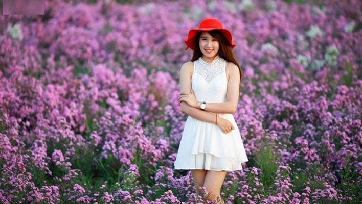 Cánh đồng hoa Thạch Thảo điểm đến thu hút nhiều bạn trẻ (ảnh internet)