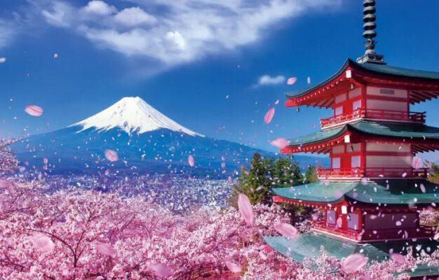 Điểm ngắm hoa đẹp ở Châu Á