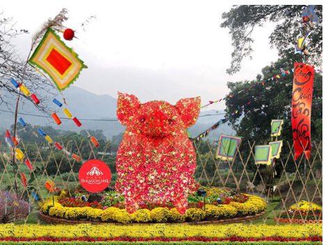 Chú lợn nghộ nghĩnh được tết bằng hoa ở vườn hoa tại Ba Vì (ảnh internet)
