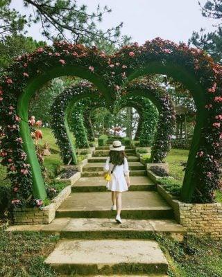 Cổng hoa có nhiều màu sắc đẹp (ảnh internet)