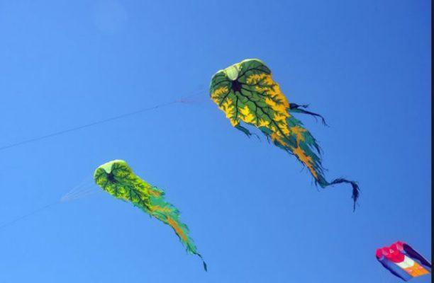 Chơi thả diều ở Hồ Mây cực thú vị (ảnh internet)