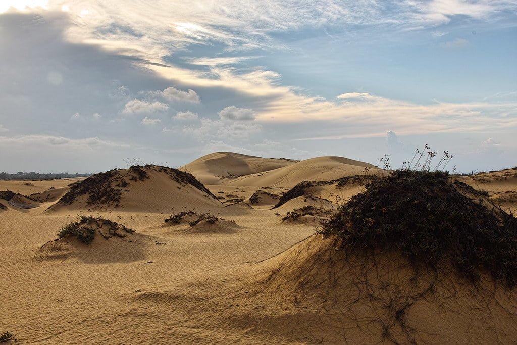 Nghỉ lễ 30/4 nên đi đâu: Tận hưởng không khí hoang mạc Sahara tại cồn cát Quang Phú