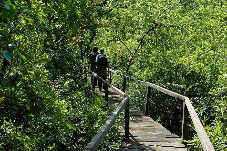 Vườn quốc gia Cát Tiên với nhiều trải nghiệm thú vị