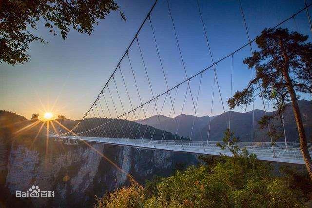 Toàn cảnh cây cầu thủy tinh