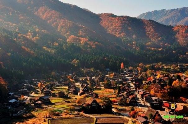 Mùa thu về trên ngôi làng Shirakawago (ảnh st )