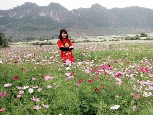 Ngắm các loài hoa khác đẹp tuyệt (ảnh Thùy Dương)