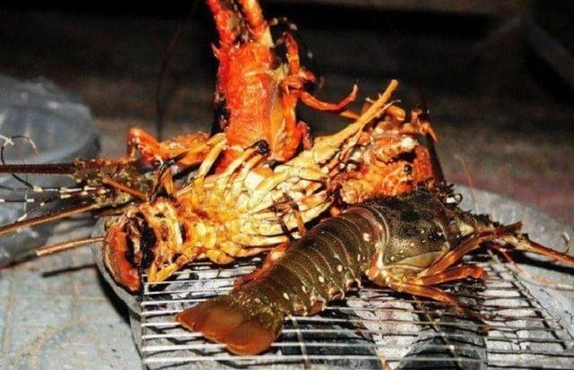 Nướng tôm hùm tại đảo (ảnh internet)