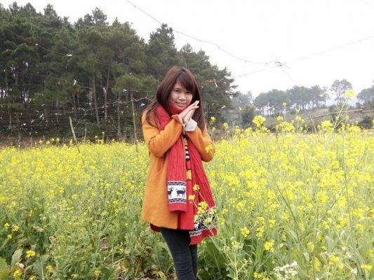 Cánh đồng hoa cải vàng đẹp lung linh (ảnh Thùy Dương)