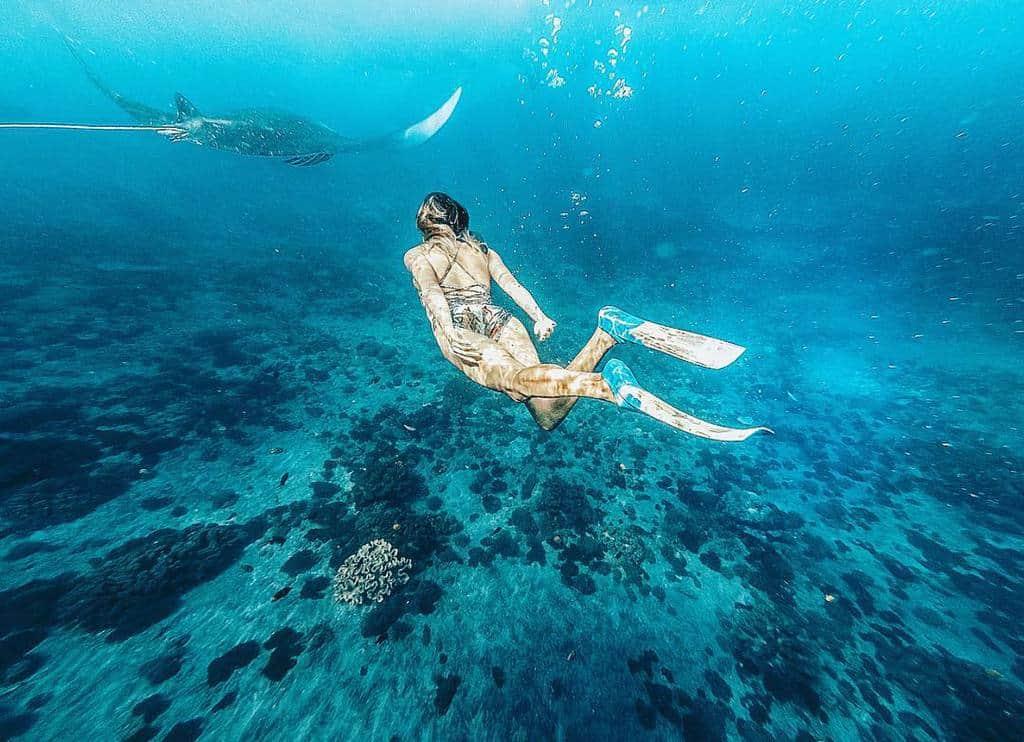 Lặn biển ở Vịnh Crystal Tren Dao Nusa Penida (ảnh sưu tầm)