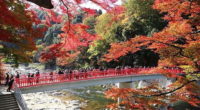 Thành phố Nagoya những điều bạn chưa biết?2