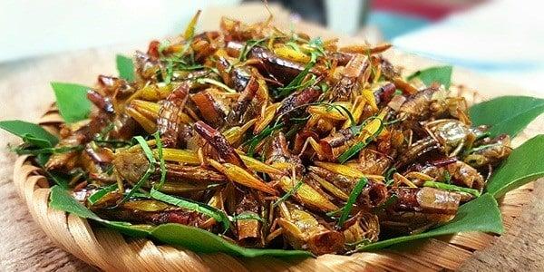 Món ăn chế biến từ Châu chấu thơm ngon, béo ngậy
