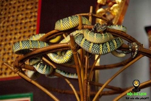 Khu vực chính diện có nhiều rắn