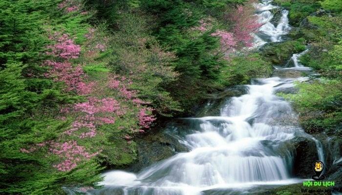 Suối Tranh cảnh đẹp như tranh được thiên nhiên vẽ nên thơ và trữ tình