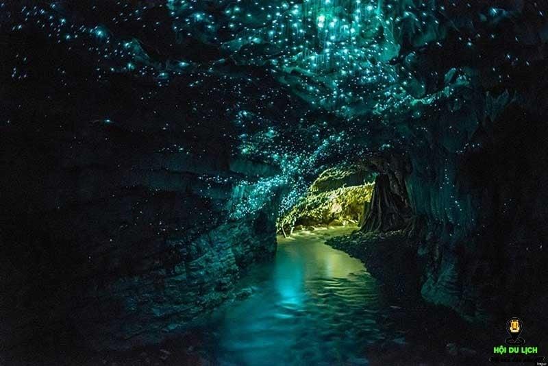 """Lạc bước vào """"thiên hà"""" tuyệt diệu trong hang động Waitomo Glowworm New Zealand"""