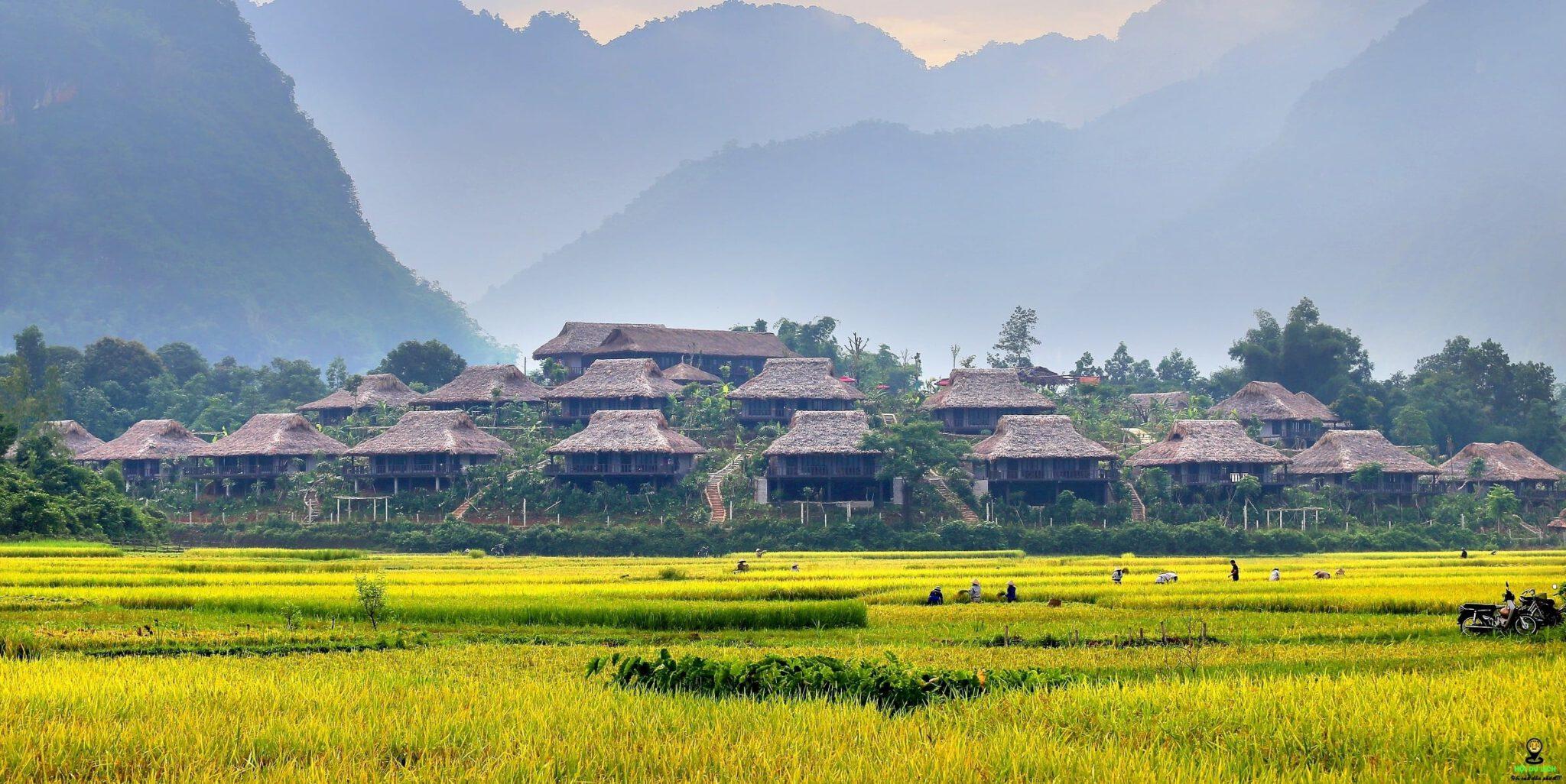 Du lịch bản lác Mai Châu cho tâm hồn khoáng đạt