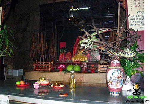 Những chú rắn ở khắp nơi trong đền