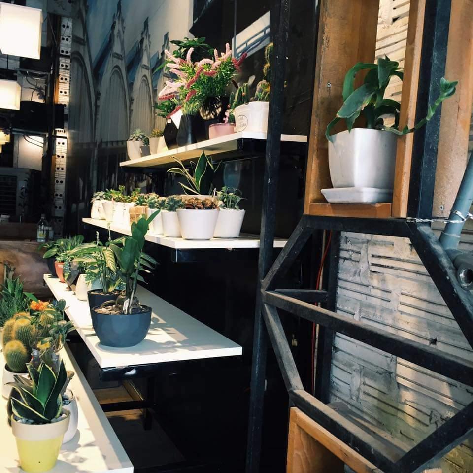 City Coffee - những quán cà phê muôn màu ở Hà Nội.