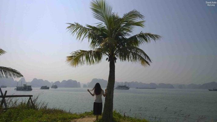 Hạ Long nhìn từ đảo Tuần Châu