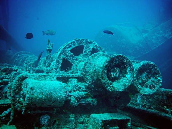 Lặn biển là lựa chọn đầy hấp dẫn ở Socotra