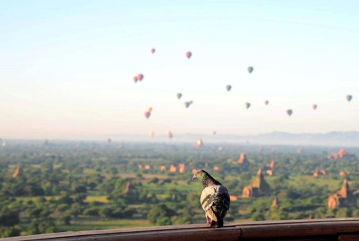 Bagan yên bình