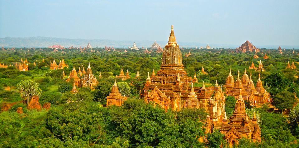 Đền tháp giữa bạt ngàn cây xanh
