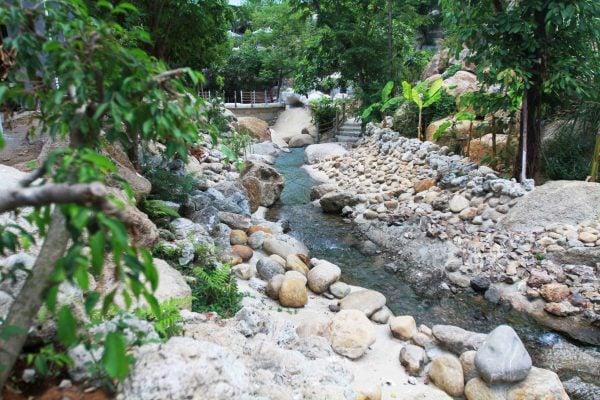 Con đường ven suối hoang dã
