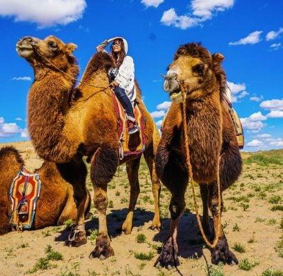 Ba môn chính của lễ hội là bắn cung, cưỡi ngựa và vật cùng nhiều hoạt động khác như múa truyền thống và ẩm thực.