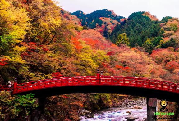 Lạc bước trong mùa thu của Nhật Bản