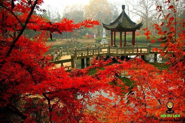 Cảnh mùa thu đẹp tuyệt ở núi Qixiashan- ảnh sưu tầm