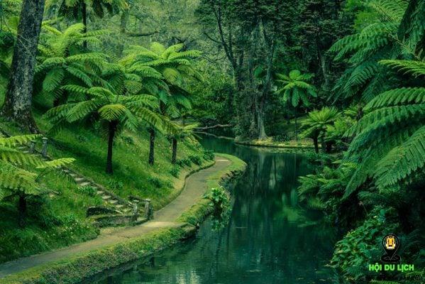 Con đường quanh co trên đảo- ảnh sưu tầm
