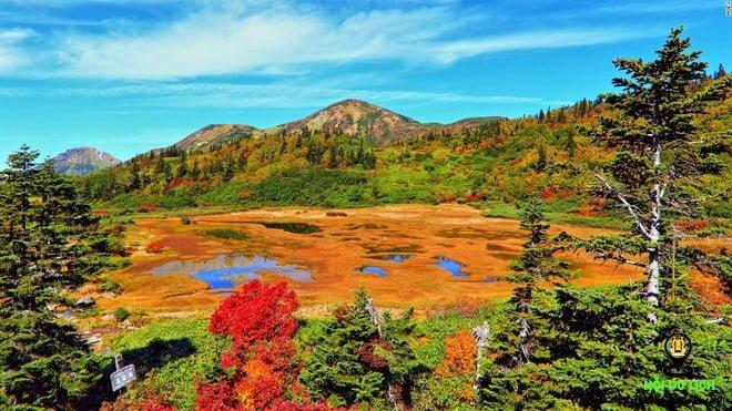 Hồ Koya ở Niigata khi thu về- ảnh sưu tầm