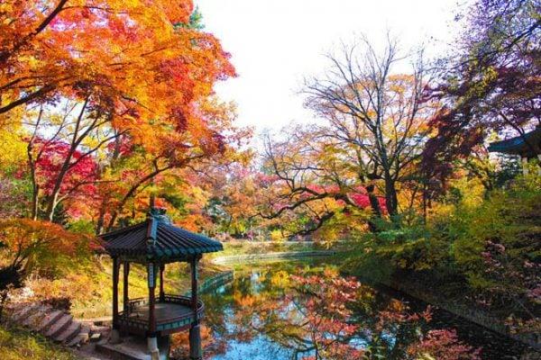 Khung cảnh đẹp như trong tranh của Khu vườn Bí mật