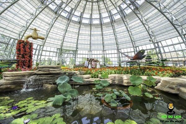 Khu vườn Việt ở đồi vạn hoa- ảnh sưu tầm